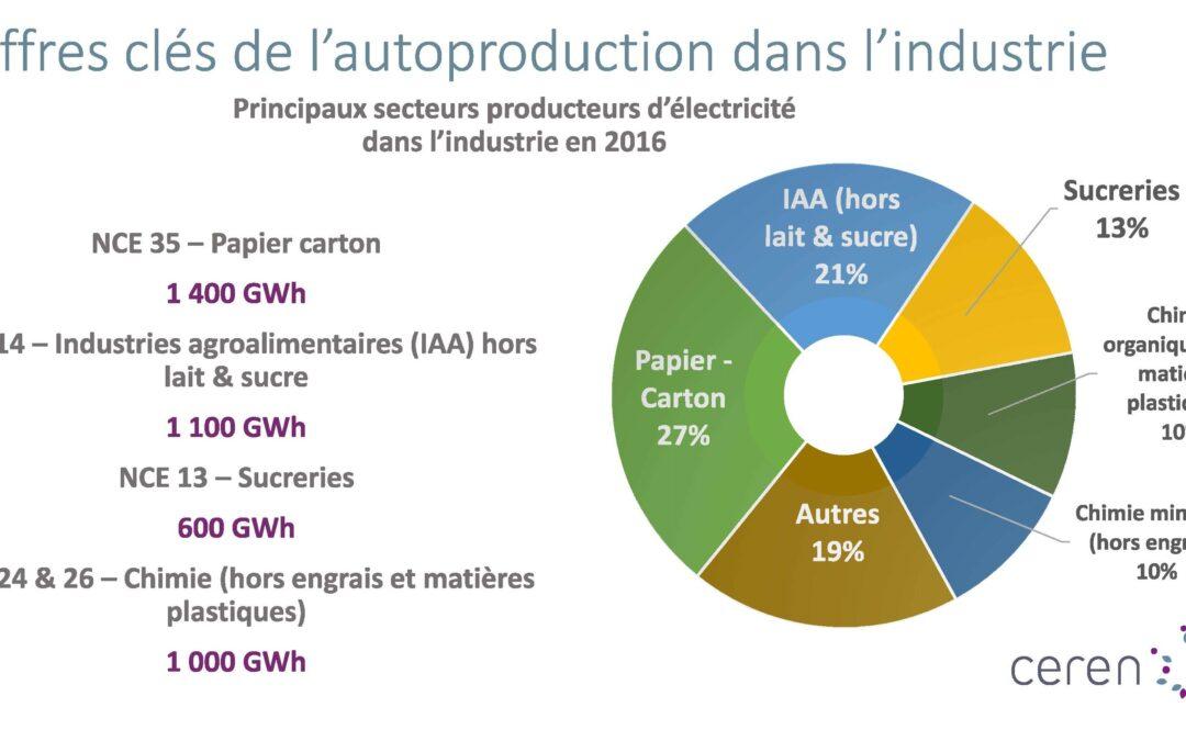 L'autoproduction d'électricité représente 5 TWh dans l'industrie